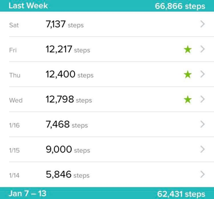 Step Count Jan 20