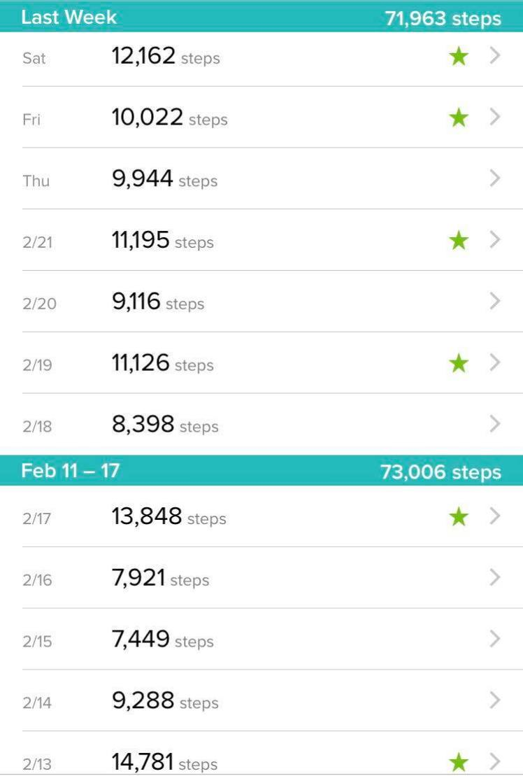 Step Count Feb